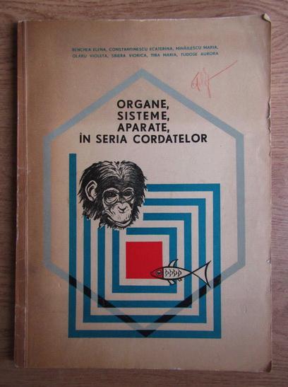 Anticariat: Benchea Elena - Organe, sisteme, aparate, in seria cordatelor