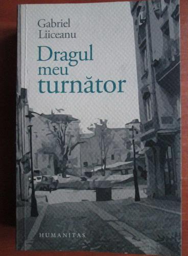 Anticariat: Gabriel Liiceanu - Dragul meu turnator