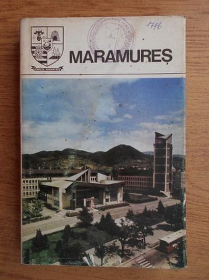 Anticariat: Maramures. Monografie (Judetele patriei)
