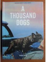 Raymond Merritt - A thousand Dogs