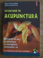 Dan Vlad Filimon - Incursiune in acupunctura