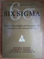 Peter S. Pande - Six Sigma