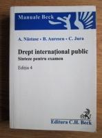 A. Nastase - Drept international public. Sinteze pentru examen