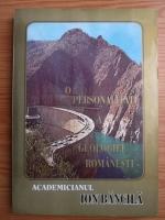 Alexandra Ciuhu - Academicianul Ion Bancila, o personalitate a geologiei romanesti