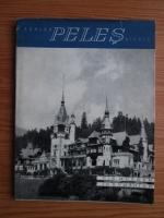Anticariat: Schlob - Peles, Sinaia (text in limba germana)