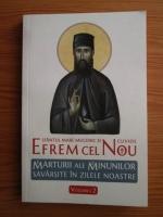 Sfantul Efrem Cel Nou - Marturii ale minunilor savarsite in zilele noastre (volumul 2)
