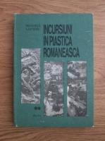 Negoita Laptoiu - Incursiuni in plastica romaneasca II