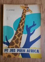 A. Liubos - Pe jos prin Africa