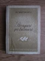 Anticariat: A. S. Macarenco - Steaguri pe turnuri