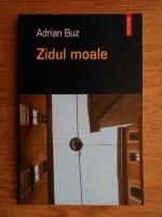 Anticariat: Adrian Buz - Zidul moale