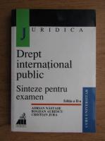 Adrian Nastase, Bogdan Aurescu, Cristian Jura - Drept international public. Sinteze pentru examen