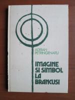 Adrian Petringenaru - Imagine si simbol la Brancusi