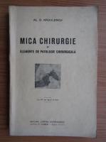 Anticariat: Al. D. Radulescu - Mica chirurgie si elemente de patologie chirurgicala (1934)