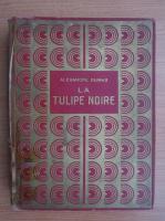 Alexandre Dumas - La tulipie noire (1936)