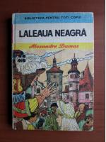 Anticariat: Alexandre Dumas - Laleaua neagra