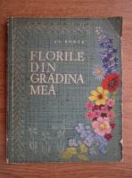 Alexandru Borza - Florile din gradina mea