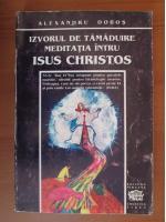 Anticariat: Alexandru Dobos - Izvorul de tamaduire meditatia intru Isus Christos