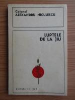Anticariat: Alexandru Niculescu - Luptele de la Jiu