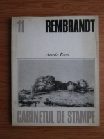 Anticariat: Amelia Pavel - Rembrandt