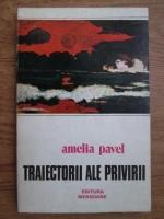 Amelia Pavel - Traiectorii ale privirii