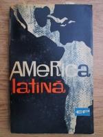 America Latina. Indreptar politic-economic
