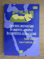 Anticariat: Anca Gabriela Ilie - Procesul dezvoltarii in orientul apropiat in contextul globalizarii
