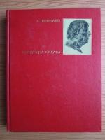 Anticariat: Andre Bonnard - Civilizatia greaca (volumul 2)
