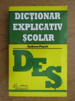 Anticariat: Andreea Panait - Dictionar explicativ scolar