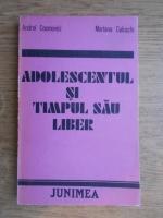 Anticariat: Andrei Cosmovici - Adolescentul si timpul sau liber