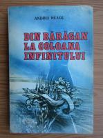 Anticariat: Andrei Neagu - Din Baragan la Coloana Infinitului