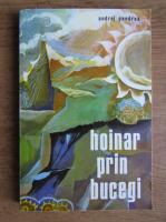 Andrei Pandrea - Hoinar prin Bucegi