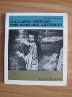 Anticariat: Andrei Panoiu - Pictura votiva din nordul Olteniei