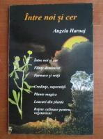 Anticariat: Angela Harnaj - Intre noi si cer