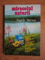 Angela Harnaj - Miracolul naturii