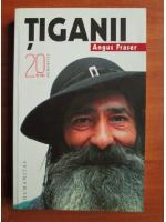 Anticariat: Angus Fraser - Tiganii