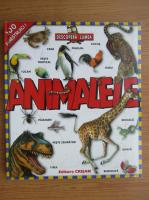 Anticariat: Animale, 100 ferastruici