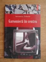 Anticariat: Antoaneta Zaharia - Garsoniera in centru