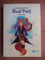 Antoine de Saint Exupery - Micul print (editie bilingva)