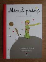 Antoine de Saint Exupery - Micul print (format mai mare)