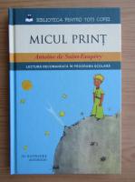 Antoine de Saint-Exupery - Micul Print