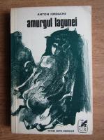 Anticariat: Anton Iordache - Amurgul lagunei