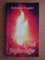 Anticariat: Antonia Toader - Jocul fulgilor de jar