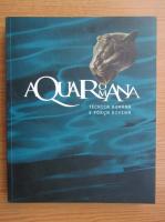 Anticariat: Aqua Romana. Human technique and divine force