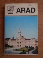 Anticariat: Arad. Monografie (judetele patriei)