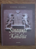 Aristide Streja, Lucian Schwarz - Sinagoga in Romania