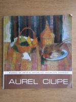 Aurel Ciupe. Expozitie retrospectiva