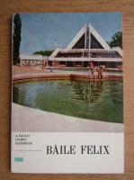 Baile Felix. A pocket tourist guidebook