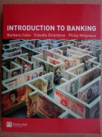 Barbara Casu - Introduction to banking