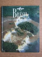 Anticariat: Bresil. Entre tradition et modernite