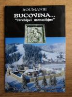 Anticariat: Bucovina. L'archipel monastique